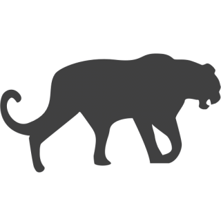 Image Free Panther Icon PNG images