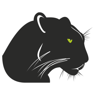 Panther Icon Image Free PNG images