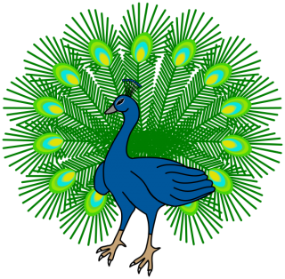 Download Images Free Peacock PNG images