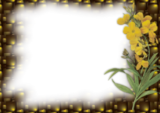 Flower Photo Frame Png PNG images