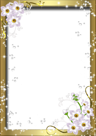 File Photo Frame PNG PNG images