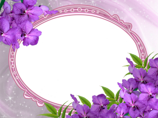 Purple Wedding Photo Frame Png PNG images