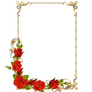 Rose Photo Frame Png PNG images