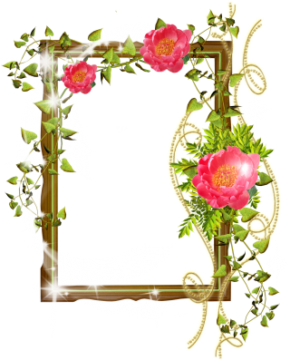 Flower Frame Photoshop Background Png PNG images