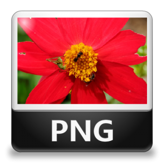 Png File Type Icon PNG images