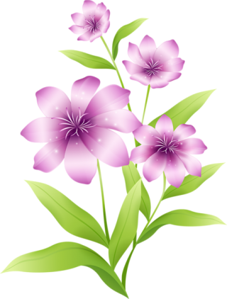 Flowers: Transparent Flowers Birds II PNG images