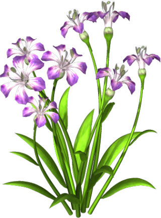 Purple Flower PNG Download Free PNG images
