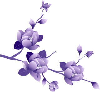 Download Purple Flower Icon PNG images