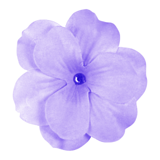 Download Purple Flower Latest Version 2018 PNG images