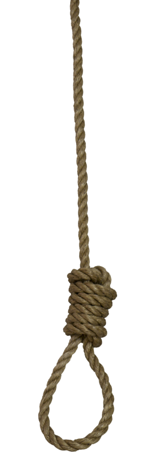 Rope Png Download PNG images