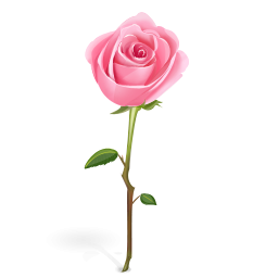 Rose Icon Transparent Rose Png Images Vector Freeiconspng