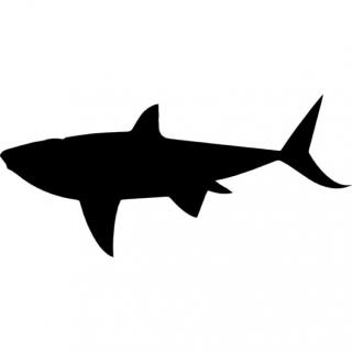 Shark Silhouette Icon PNG images