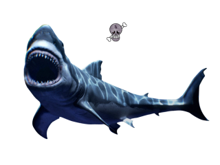 Scary Great White Shark Png PNG images