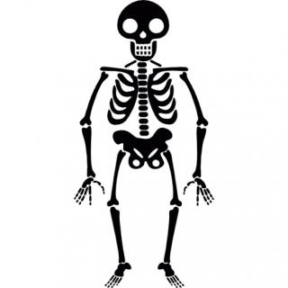 Halloween Skeleton Icons PNG images