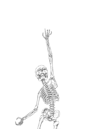 Png Save Skeleton PNG images