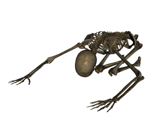 Skeleton Worshiping Png PNG images