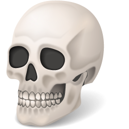 Body Skull Icon PNG images