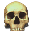 Skull Save Icon Format PNG images