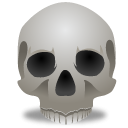 Free High-quality Skull Icon PNG images