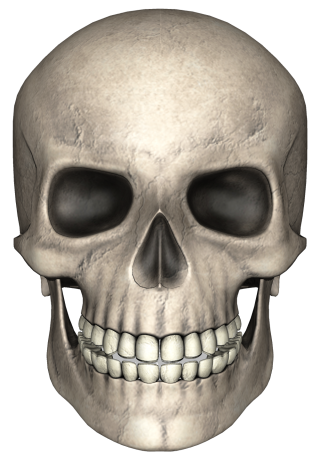 Gray Painted Skull Photo PNG images