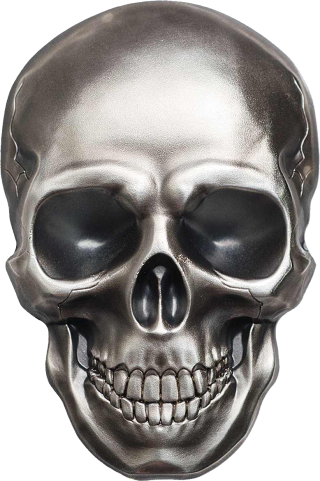 Best Gray Metal Skull Picture Images PNG images