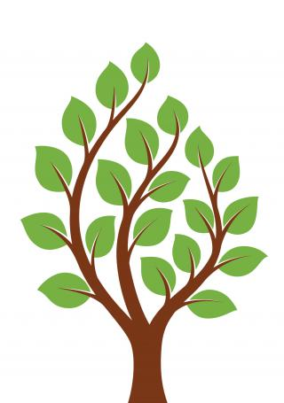 Free Icon Download Small Tree Vectors PNG images