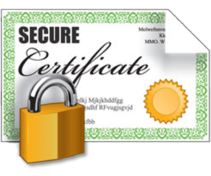 Ssl Encryption Icon Vector PNG images