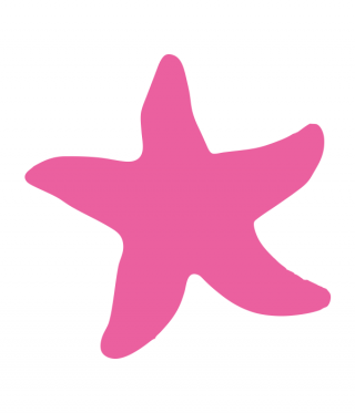 Download And Use Starfish Png Clipart PNG images