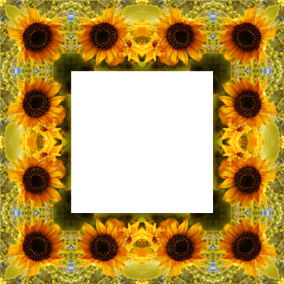 Clipart Sunflower Png Best PNG images