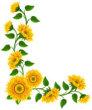 Sunflower Png Vector PNG images