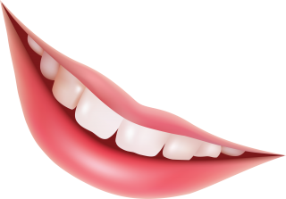 Teeth Png Teeth Transparent Background Freeiconspng