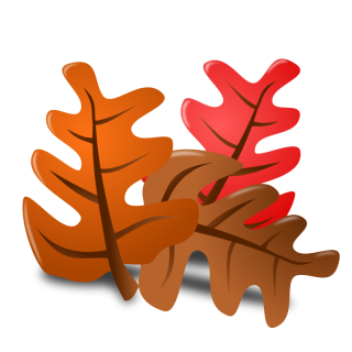 Pic Thanksgiving PNG PNG images