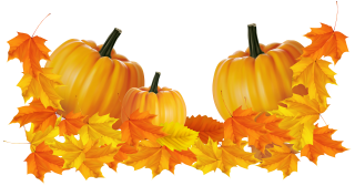 Get Thanksgiving Png Pictures PNG images