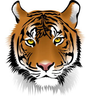 Tiger Head Png PNG images