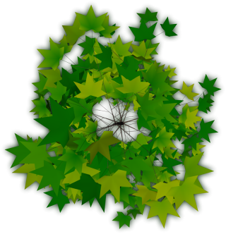 Trees Top Png PNG images