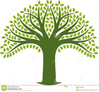 Tree Icon Photos PNG images