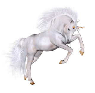 Unicorn Grace PNG PNG images