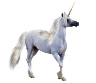 Unicorn Transparent Png PNG images