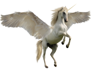 White Unicorn PNG PNG images