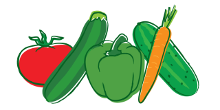 Png Vector Vegetable PNG images
