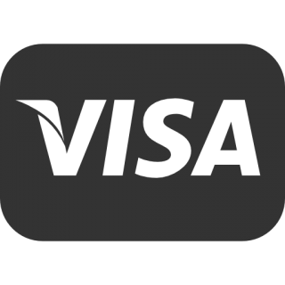 Visa Icon Size PNG images