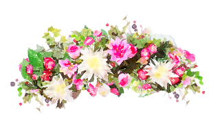 Flower Watercolor Transparent PNG PNG images