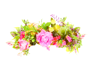 HD Flowers Image Watercolor PNG PNG images