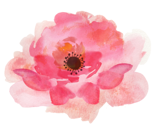 Pink Watercolor Flowers High-quality Png PNG images