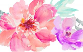 Watercolor Moders Style Flowers PNG images