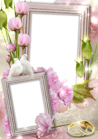 High-quality Wedding Frame Cliparts For Free! PNG images
