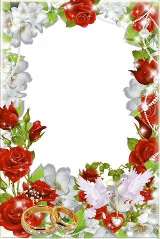 Vector Png Wedding Frame Free Download PNG images