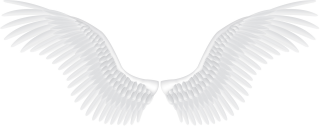 Background Png Hd Wings Transparent PNG images