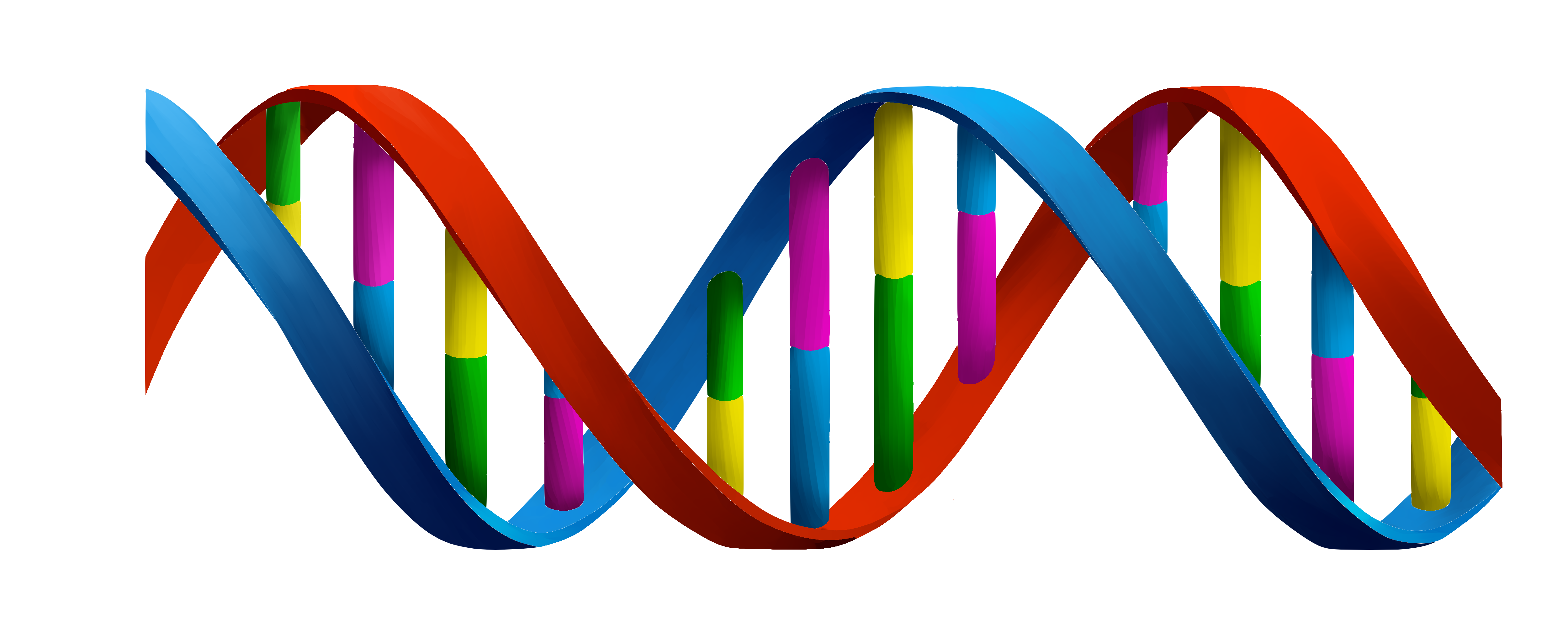 Colorful For Children Dna Images