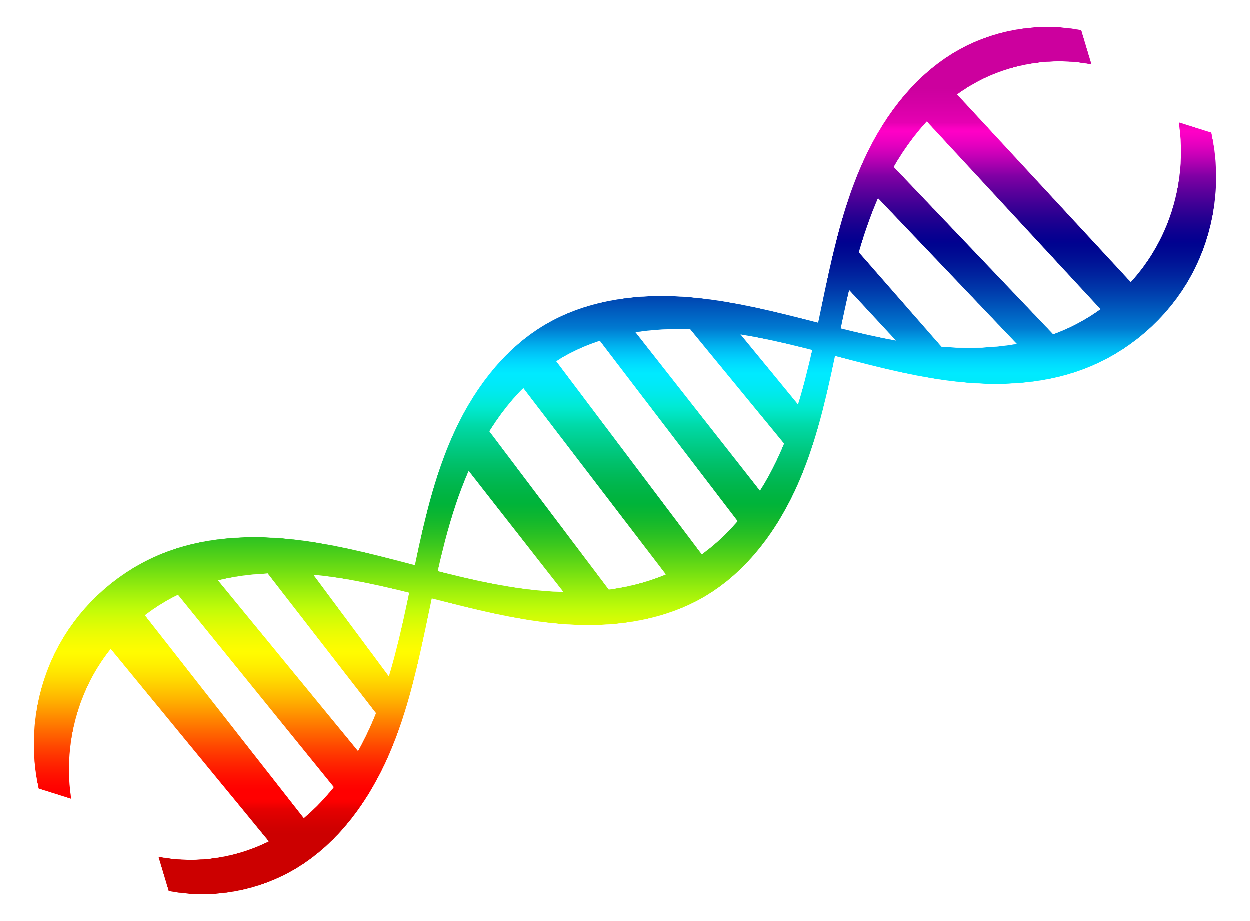 Rainbow Color Dna Pictures
